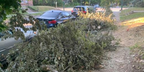 Cars are seen parking in front of storm debris.