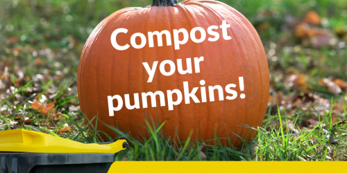 Graphic telling residents to compost their pumpkins.