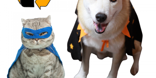 A cat and a dog are shown in Halloween costumes.