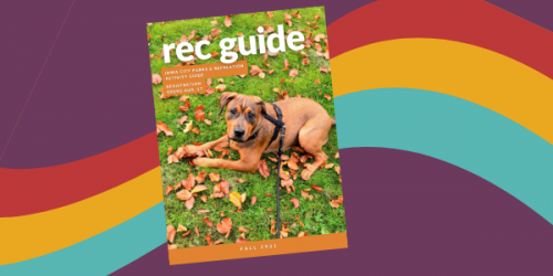 An image of the upcoming Rec Guide.