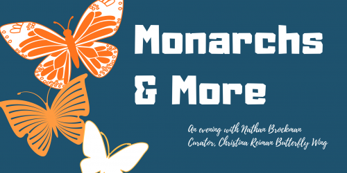Monarchs and More grahpic