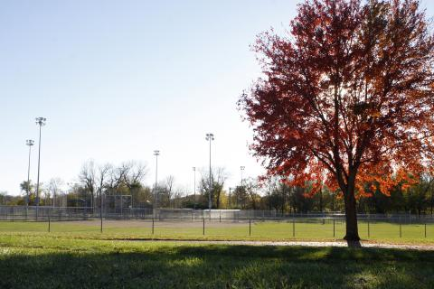 Napoleon Softball Complex