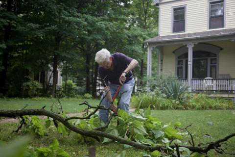 A man cutting a downed limb in his yard.