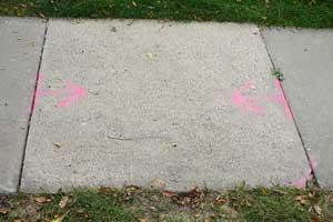 A damaged sidewalk with bright pink markings spray painted on the walk to indicate damage.