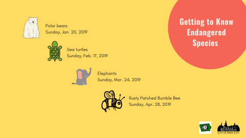 Getting to Know Endangered Species