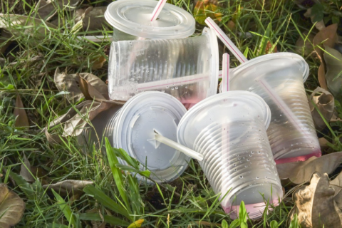 plastic straws and cups
