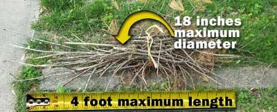Woody Yard Waste Dimensions