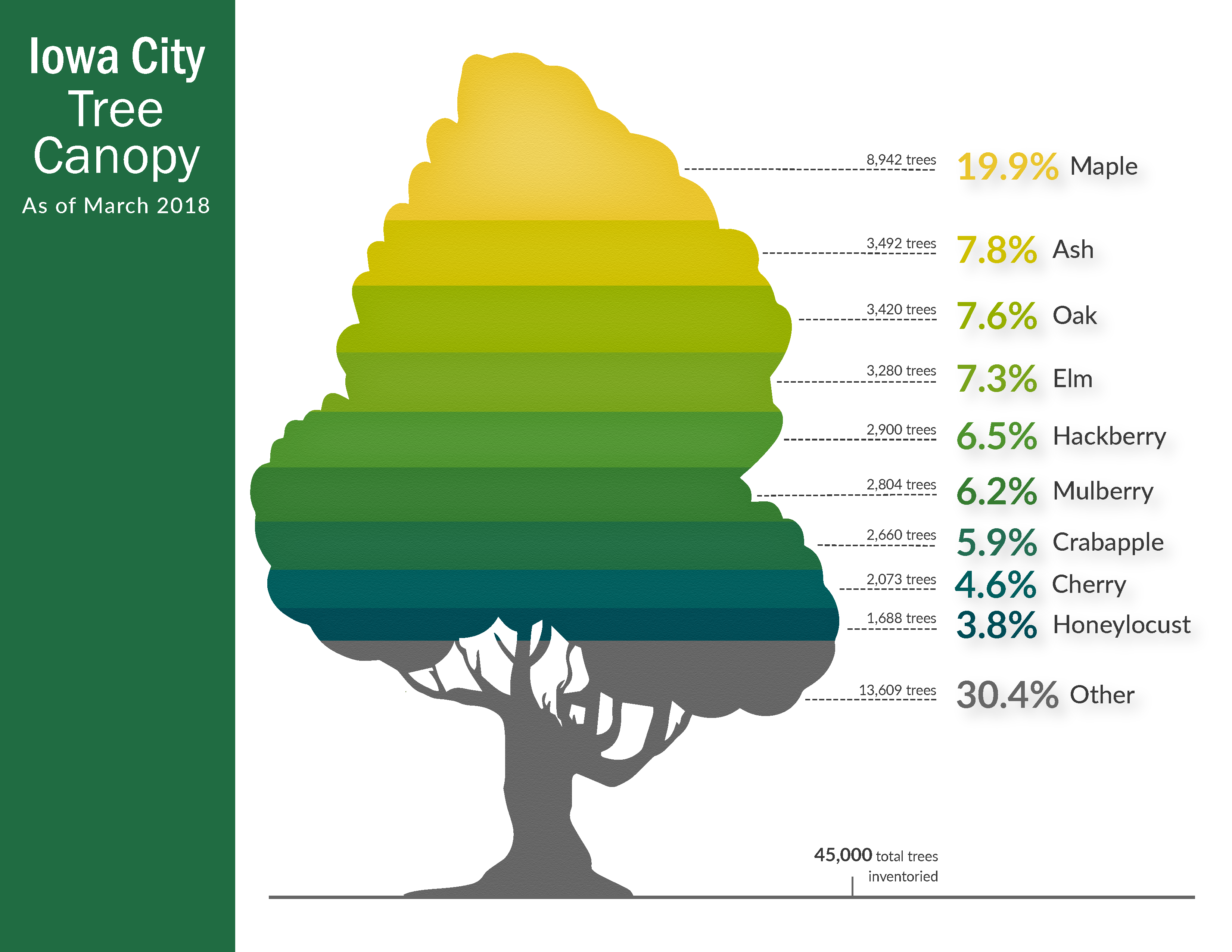 A chart of Iowa City's current tree canopy